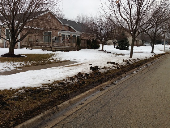 Snow plow damage to lawn in Bolingbrook, 10 March 2013.